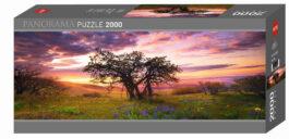 Puzzle 2000 Humboldt – Βελανιδιά